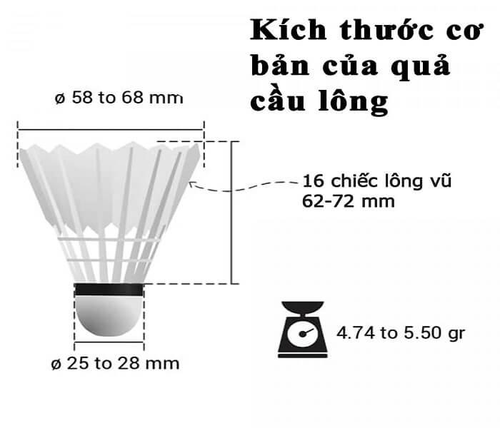kic-thuoc-tieu-chuan